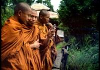 Des bonzes au Laos, 2009