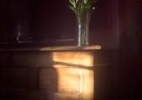 Fleurs-chambre