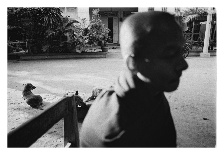 BirmanieNB-16_