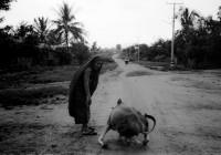 Burmese Days-05